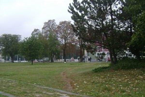 Oberači lámu konáre stromov. Ohrozujú ľudí a ničia mestský majetok.