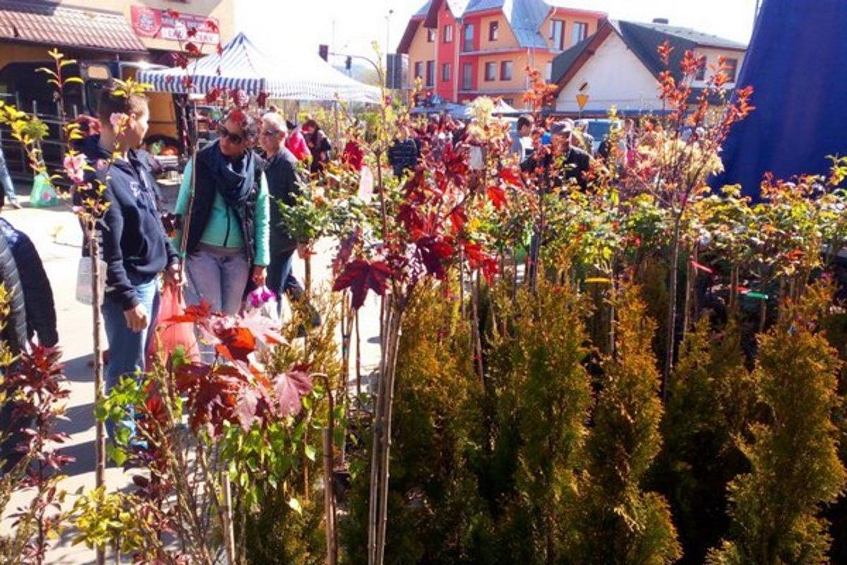 43f24efb610a Spišiaci trávia voľný víkend aj na trhoch v Poľsku. Takto to vyzerá v Novom  Targu