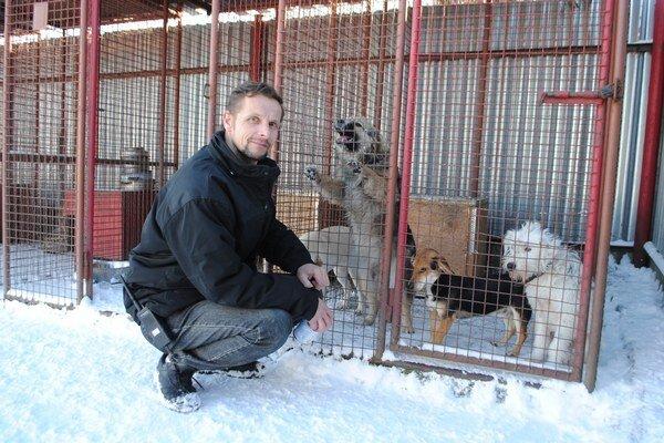 R. Hradiský. Po novom roku odchytili niekoľko zatúlaných psíkov.