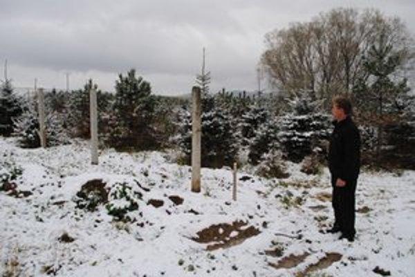 Jozef Gaduš. Na svojej plantáži si už stavia nový plot.