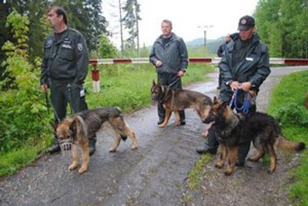 V teréne boli aj záchranárske a policajné psy.
