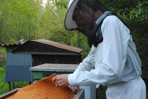 P. Slivko. Ani ochrana proti včelám ich bodnutiu nezabráni.