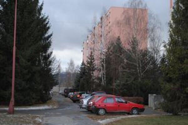 Vysoké stromy. Z malých stromčekov za niekoľko rokov vyrástli obrovské stromy, ktoré v niektorých prípadoch spôsobujú problémy.