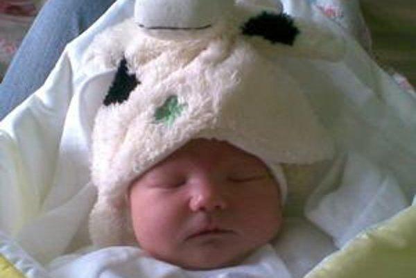 Malá Ľubka. Je jedným z vlaňajších novorodencov. Svoje prvé meniny oslávi v marci.