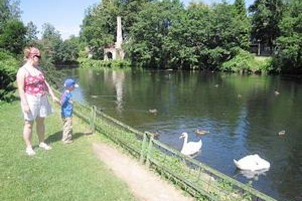 Zoo. V spišskonovoveskej zoo sa nachádza jazierko s vodným vtáctvom, cez areál zase preteká potok.