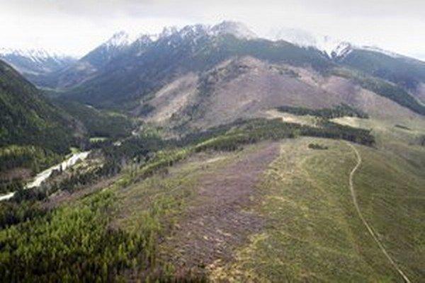 Víchrica Žofia, ktorá postihla severnú časť Slovenska 15. mája 2014, zanechala obrovské škody na lesoch a prírode Tatier. Podľa odborníkov bola porovnateľná s bórou z roku 2004, ktorá výrazne zmenila tvár a charakter tatranskej prírody.