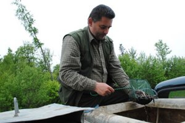 Pavol Vechter ukazuje mladé pstruhy pred vypustením do potoka.