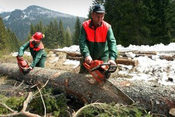 Ťažba dreva v Kôprovej a Tichej doline bola v minulých rokoch jedným z najvýraznejších stretov medzi ochranármi a lesníkmi, nevynímajúc ani priame nátlakové akcie.
