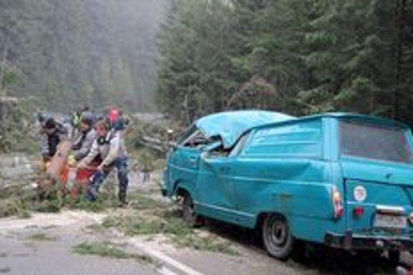 Dodávku zdemoloval padnutý strom.