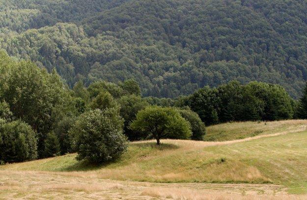 Vidiecka krajina ponúka nádherné výhľady.