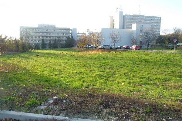 Na tejto zelenej ploche vedľa zadného vstupu do nemocnice by mali byť nové parkovacie miesta.
