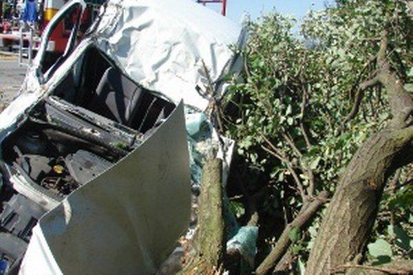 Vodič nezvládol predbiehanie autobusu a narazil do stromu.