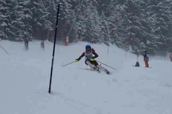 Kristína Lubyová. Medzi slalomovými bránkami.