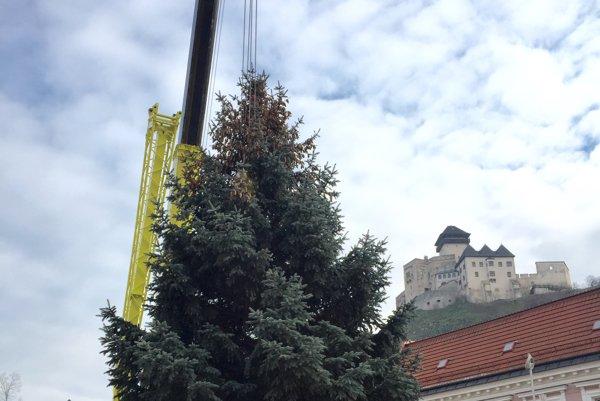 Vianočný stromček.