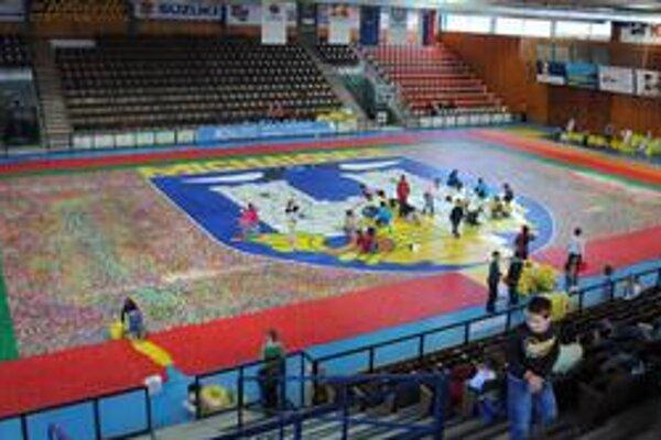 Mozaiku vyskladali na ploche 804 metrov štvorcových. Michalovčania použili vyše 1,3 milióna vrchnákov.