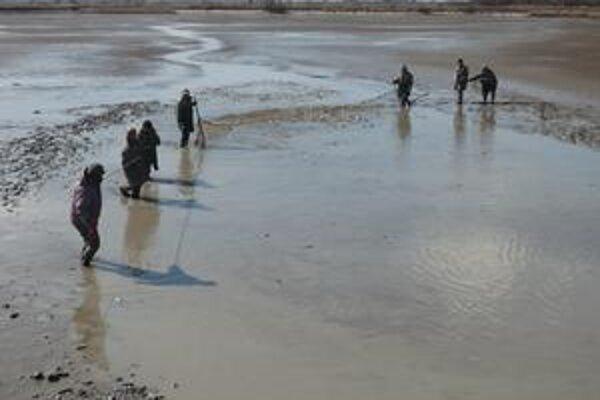 Takto sa lovia ryby sieťou v lovisku rybníka.