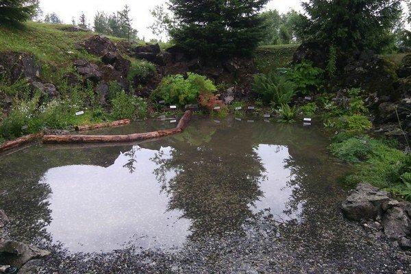 Tatranská botanická záhrada po prívalovej povodni.