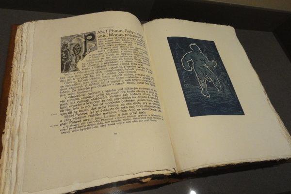 Unikátna kniha Josefa Váchala je z roku 1924, no vyzerá, akoby by bola zo stredoveku.