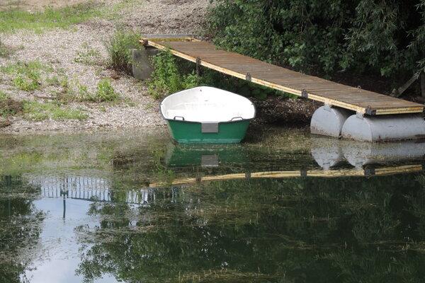 Zelená voda.