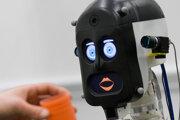 BERT2 bol nešikovný ale so svojím partnerom komunikoval aj pomocou výrazov v tvári.
