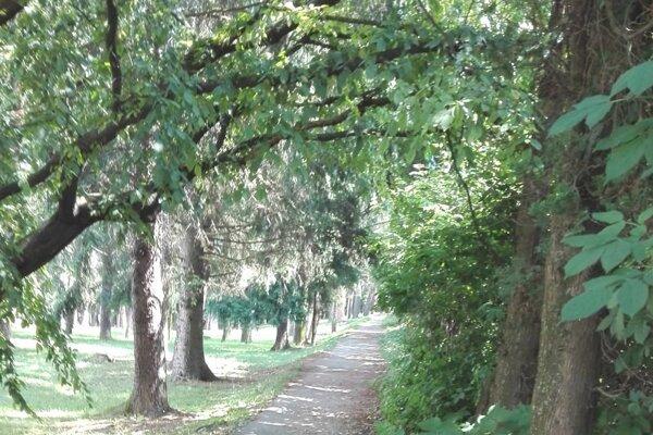 Časť parku pod Malou horou v Martine.