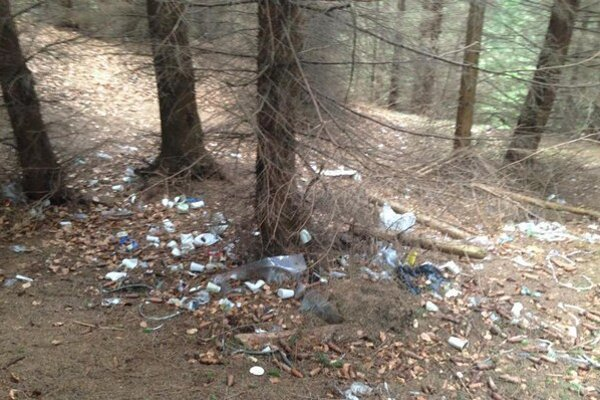 Podľa správcov Veľkej Fatry aj zástupcu lyžiarskeho strediska ide o výnimočný prípad. Lesy pohoria sú čisté.