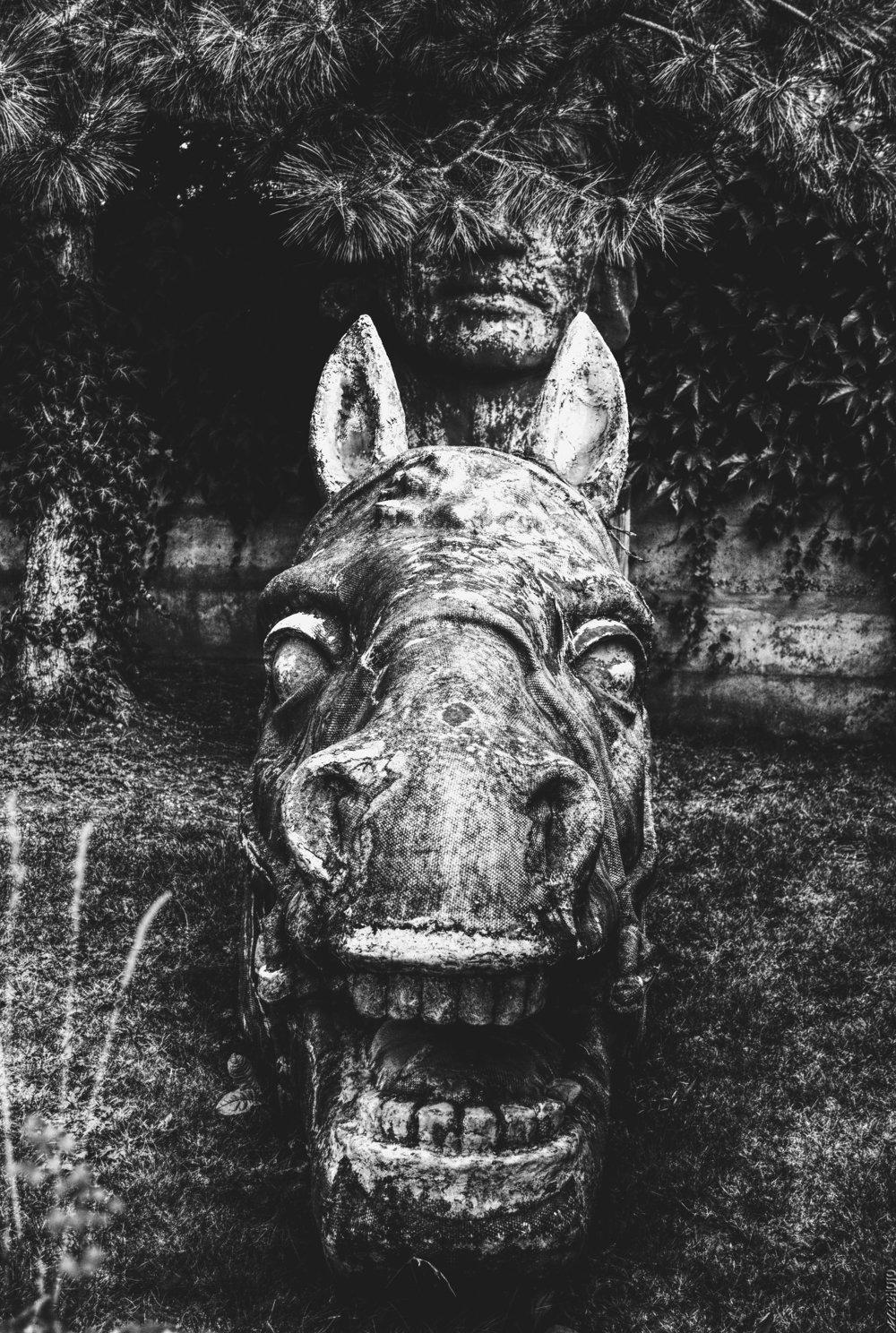 Pribinov kôň