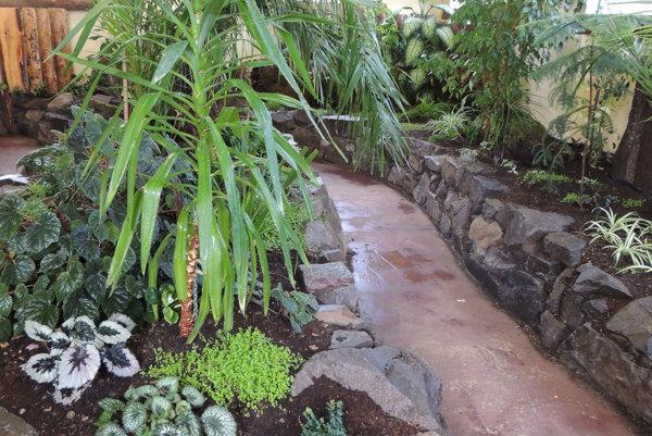 Ukážka tropickej záhrady v Prírodnom náučnom parku Aves.