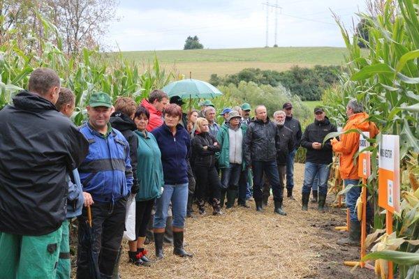 Prehliadka odrôd kukurice vTurčianskom Jasene.