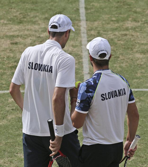 Slovenskí tenisti sa aj tento rok márne pokúšali o postup do Svetovej skupiny.