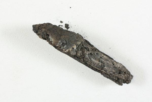 Zhorený zvitok, ktorý sa vedcom podarilo digitálne rozvinúť.