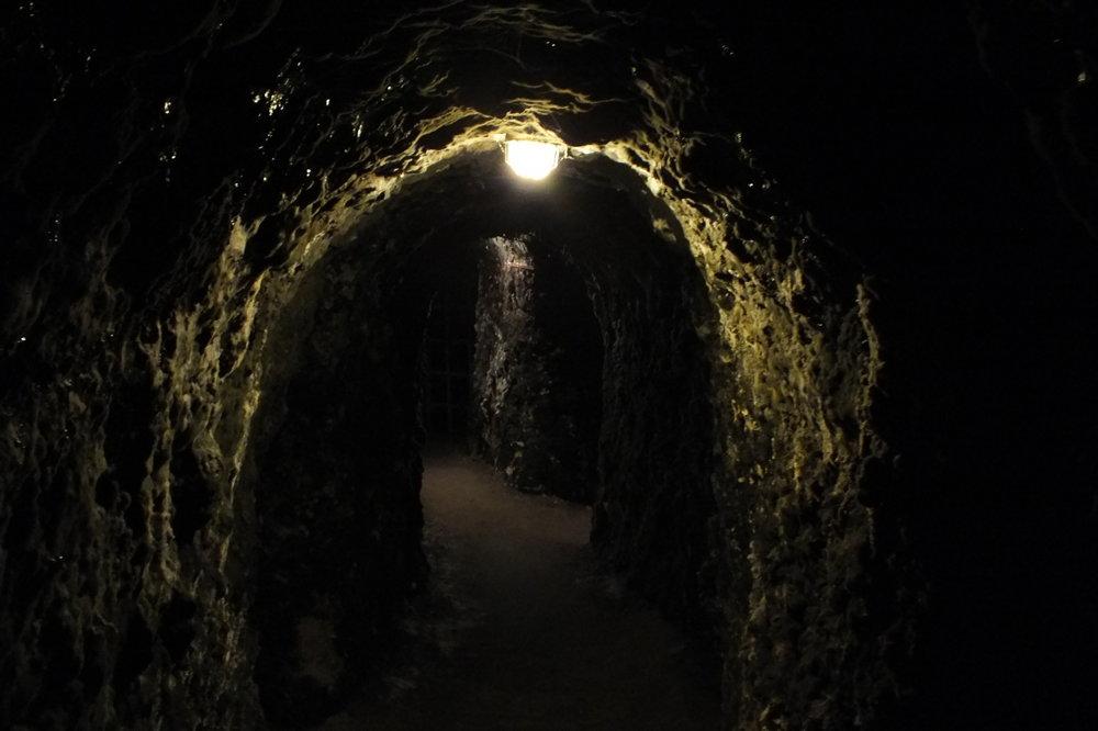 Vo Veľkej Tŕni je vyše 30 portálov pivníc, ktoré sú na zozname národných nehnuteľných pamiatok Slovenska. V podzemí vytvárajú tunely, ktoré ak by sa spojili, sú dlhé vyše 2 kilometre.