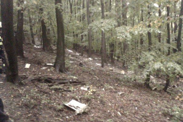 Fotografia priamo z miesta havárie od očitého svedka. Trosky sú rozmetané po lese.