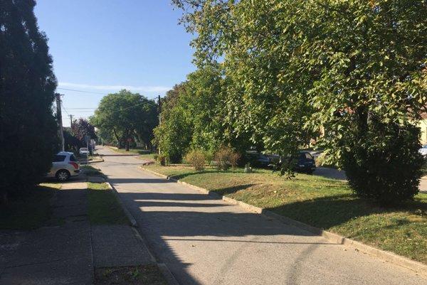 Na ulici Sv. Martina v Hrnčiarovciach bol zápach cítiť asi najviac.