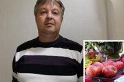 Radovan Ertl a jeho jablká ocenené na výstave Kremnické jablko.