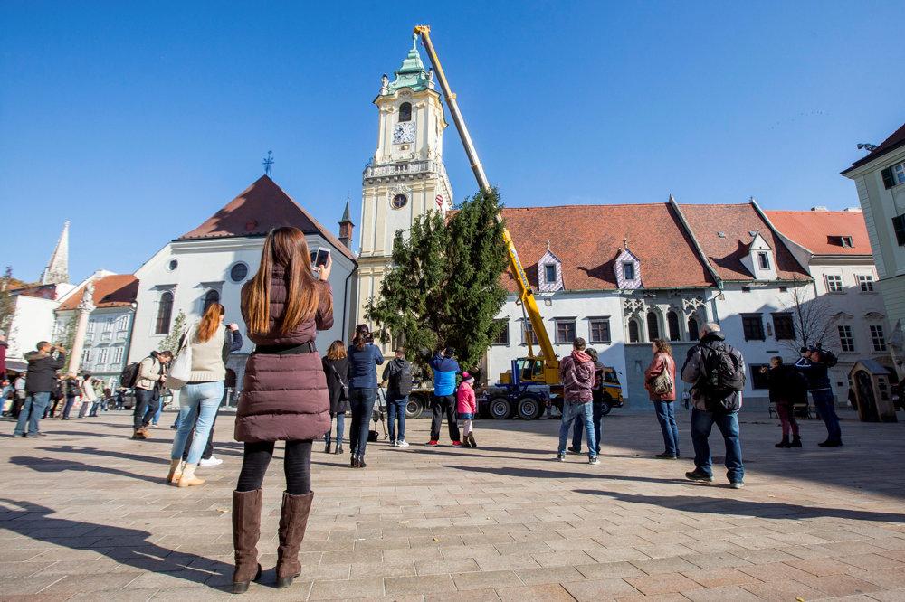 Ľudia sledujú stavanie vianočného stromčeka v Bratislave.