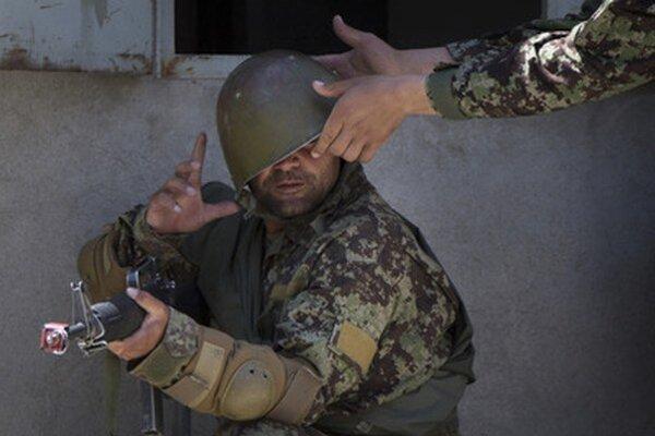 Domáci vojak počas výcviku.