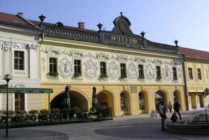 Múzeum Spiša v Provinčnom dome v Spišskej Novej Vsi.