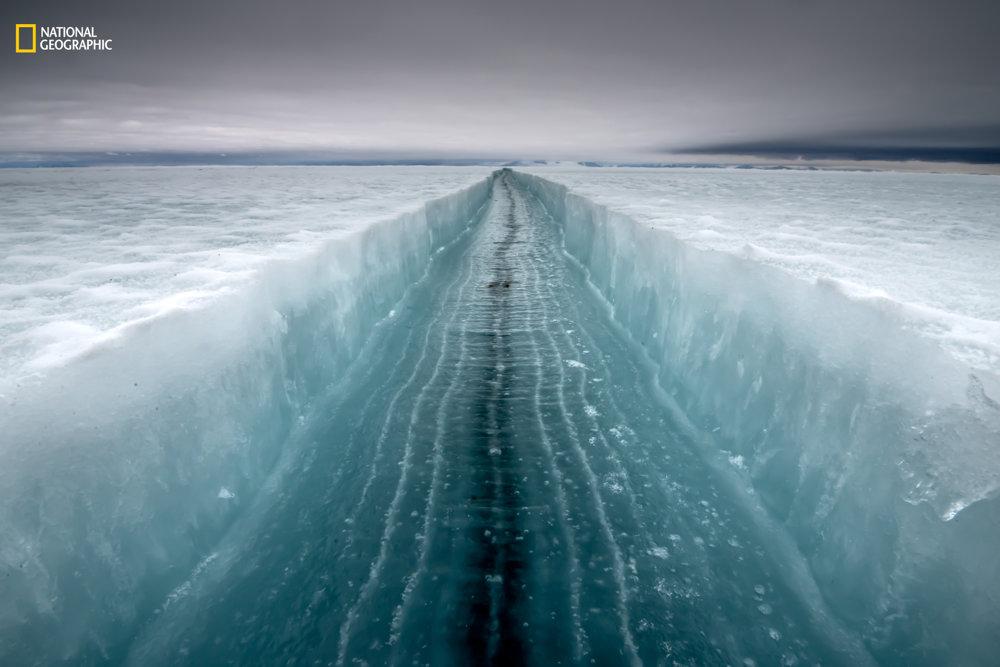 TRHLINA V ĽADE. Snímka trhliny v Rossovom mori pri pobreží Antarktídy. Ako sa trhlina otvára, vznikajú v ľade čiary. Čierna čiara v strede je najtenší ľad. Alasdair Turner/2016 National Geographic Nature Photographer of the Year