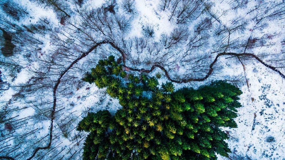 Kategória PRÍRODA, 1. miesto: Dronestagram/Michael Bernholdt