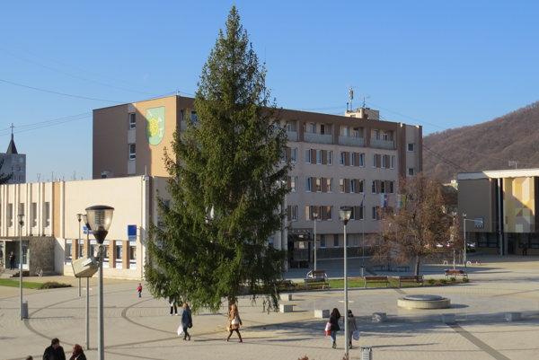 Vianočný strom v Snine už stojí.