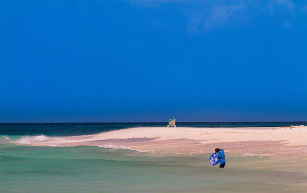 Ostrov Aruba charakterizujú skvelé pláže, nádherný Národný park a pestovanie aloe.