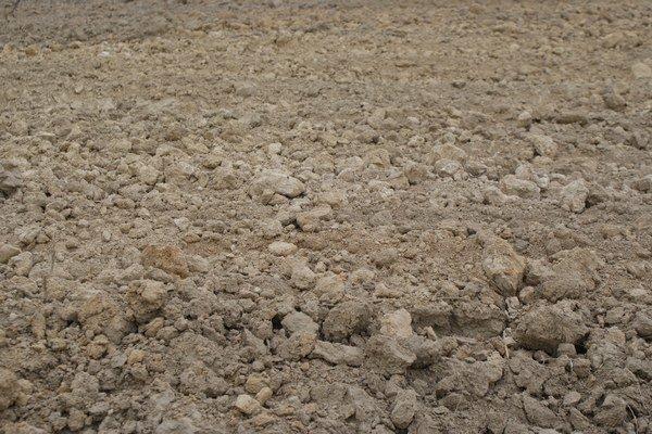 Kataster pojem poľnohospodársky pozemok nepozná, na liste vlastníctva budete takto nazvaný pozemok hľadať márne.