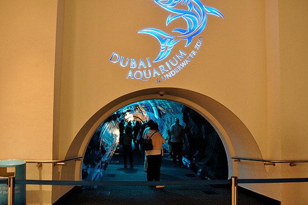 Vstup do podvodných tunelov akvária.