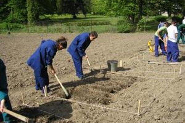 V centre sa chovanci učia napríklad za záhradníkov.