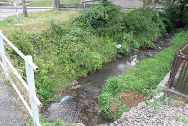 Aj v Sebedraží sa o potok stará hlavne obec.