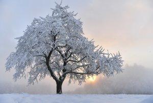 Mrazivé počasie je v celej Európe.