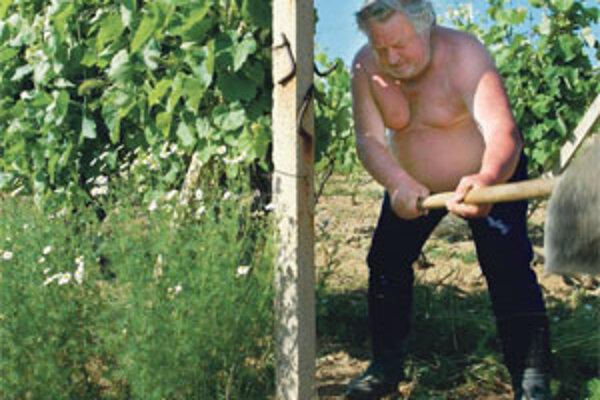 Vinohradníci z tokajskej oblasti si myslia, že minister z MostaHíd v obchodnej vojne Maďarsku ustupuje.