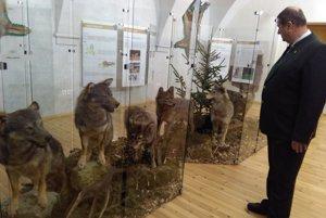 Výstava v múzeu.