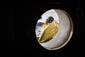 Sto migrantov malo prísť o život po tom, ako sa ich loď v sobotu potopila v Stredozemnom mori pri pobreží Líbye.